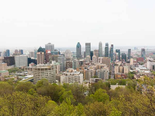 カナダ 1年留学 費用