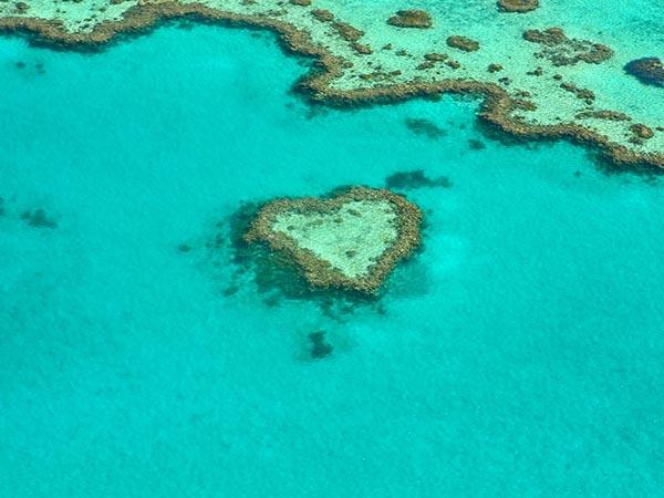 オーストラリア 1年留学 費用